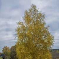 Вот и осень! :: Юрий