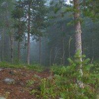 Утро...туманное....III :: Александр Буланов