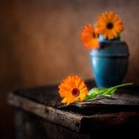 Последние цветы :: Владимир Голиков