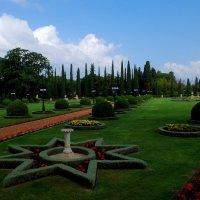 в парке :: evgeni vaizer