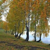 Осенний  этюд №2 :: Vlad Borschev