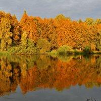 Зеркало :: Александр Валяев