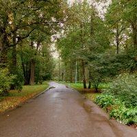 У природы нет плохой погоды.... :: Валентина Жукова