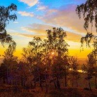 В осеннем лесу :: Анатолий Иргл
