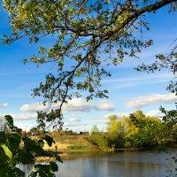 На озере :: Saloed Sidorov-Kassil