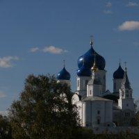 Боголюбово, монастырь. :: Евгения Куприянова