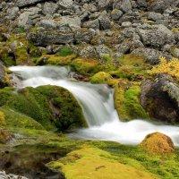 Осенняя вода... :: Илья Строганов