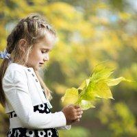 Желтые листики :: Оксана Гунина