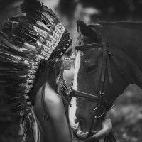Cherokee :: Sergey Prokopenko