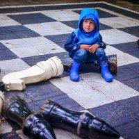 Шах и мат) :: Ксения Базарова