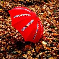 Осень в Нескучном саду :: Татьяна Богачева