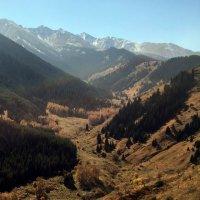 Осень в Аксайском ущелье. :: Anna Gornostayeva