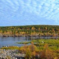 Осенний дресс-код :: Ольга