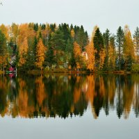 Осень :: Натали Задорина
