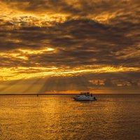 Осень на Финском заливе :: Владимир Колесников