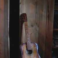 Одинокая гитара... (Ленинградская область) :: Павел Зюзин