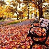 Закружила осень в нашем городе :: Лидия (naum.lidiya)