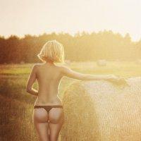 на закате... :: Наталия Полибина