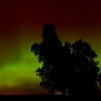 Aurora Borealis :: Laimis S