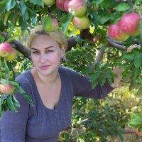 зрели яблочки в саду...) :: Райская птица Бородина
