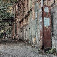 Улица :: Леонид Сергиенко