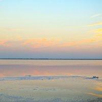 Солёное озеро :: Алексей Желтухин
