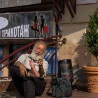 Герасим - краткая история знакомства :: Микто (Mikto) Михаил Носков