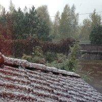 Первый снег... :: Светлана Ященко