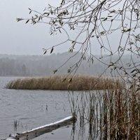 осень  первый снег 2 :: petyxov петухов