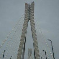 Мост :: Оксана Калинина