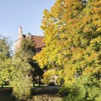 Осень в городе :: Kliwo