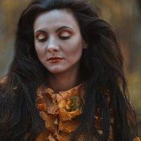 Autumn colors :: Elena Fokina