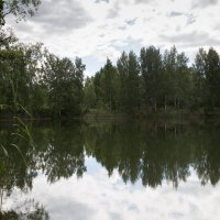 На озере :: Светлана