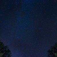 Звездное небо :: Oleg Pienko