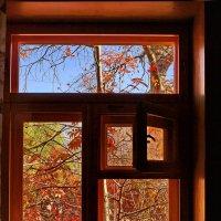 Окно в октябре. :: Владимир Михайлович Дадочкин