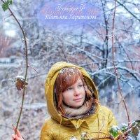 Первый снег 2014-2015 :: Таня Харитонова