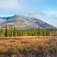 Осень в Хибинах 1 :: Алексей Видов