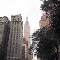 В Нью-Йорке дождь... :: Елена