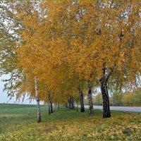 Осень. :: Татьяна и Александр Акатов
