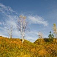 Осень в Мягрине 2 :: Валерий Талашов