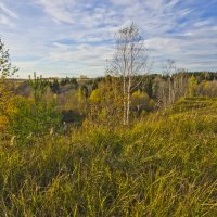 Осень в Мягрине :: Валерий Талашов