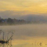 Утро на берегу Сухоны :: Андрей Нестеренко