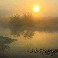 Рассвет туманного сентября...6 :: Андрей Войцехов