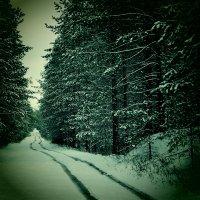 Первый снег :: Сергей Воронков