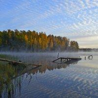 Утро у заброшенной купальни :: Юрий Цыплятников