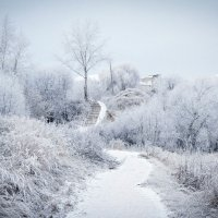 Морозная красота :: Дарья Киселева