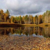 Опавшие листья, я с вами грущу... :: mike95