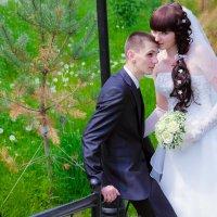 Свадьба :: Наталья Мокан