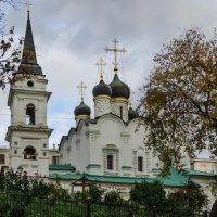 Москва. :: Лариса *