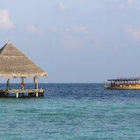 Мальдивы 9 :: Ekaterina Stafford